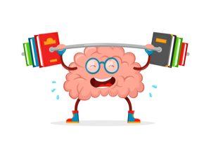 Health Benefits of Tapioca - Healthy brain function
