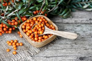 the healing nature of sea buckthorn berry